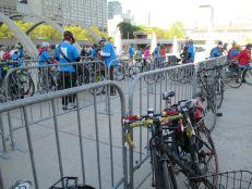 Bikes at City Hall