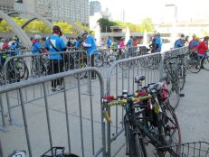 Bikes at City Hall